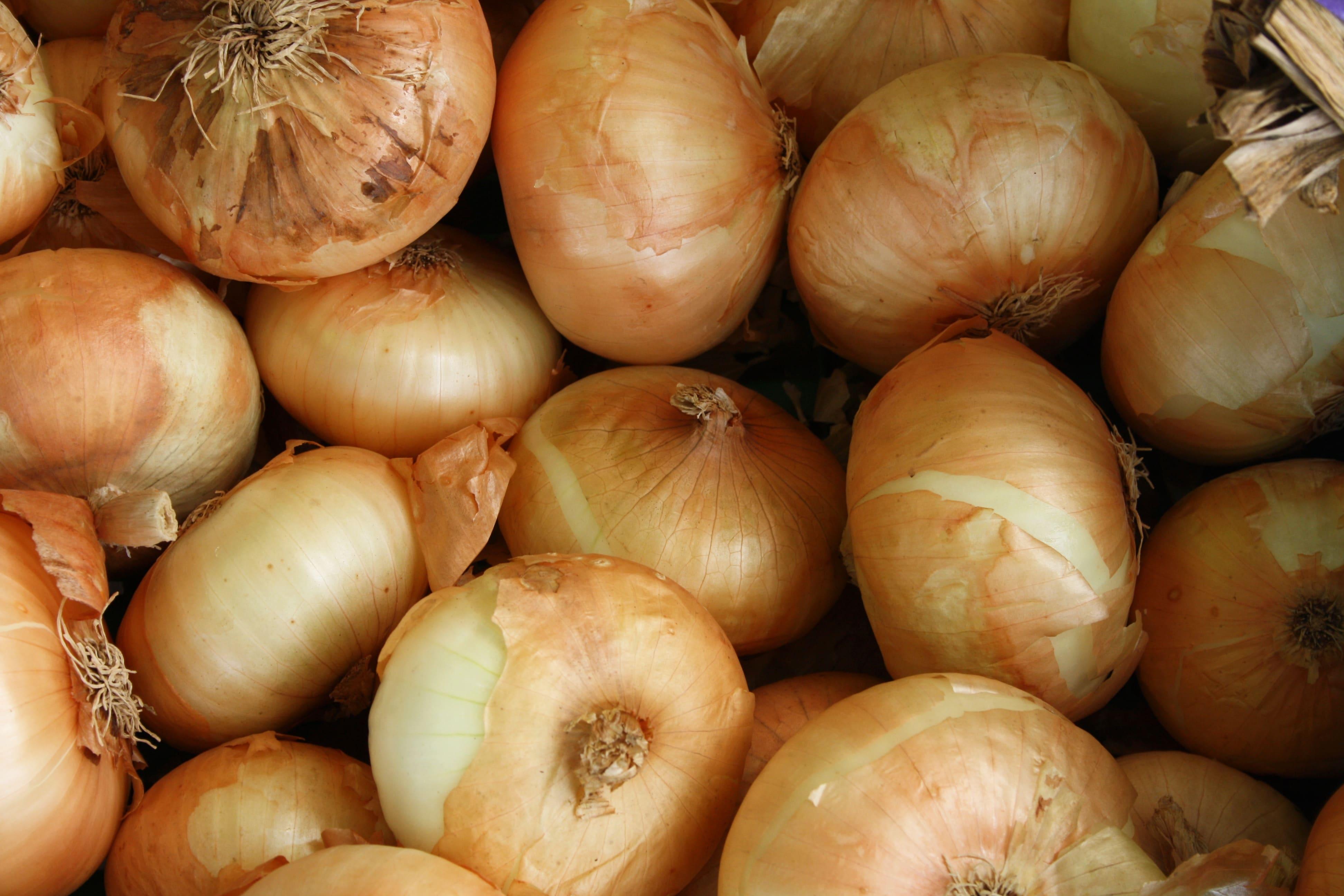 4 deliciosas recetas con cebolla